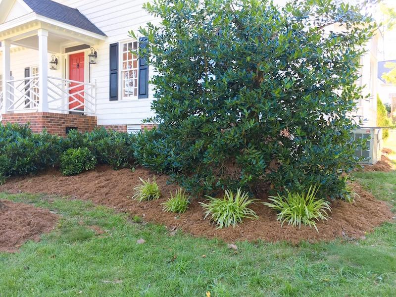 landscaping tip edge your garden beds